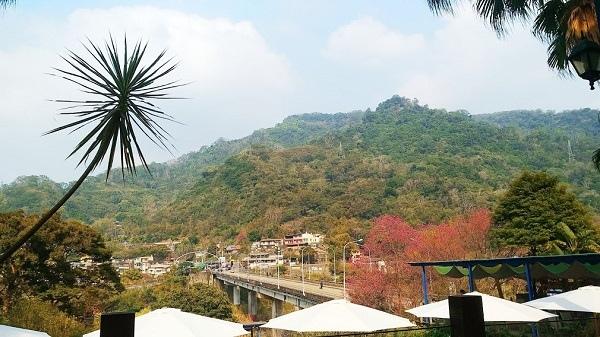 旅人蕉景觀咖啡 3.jpg