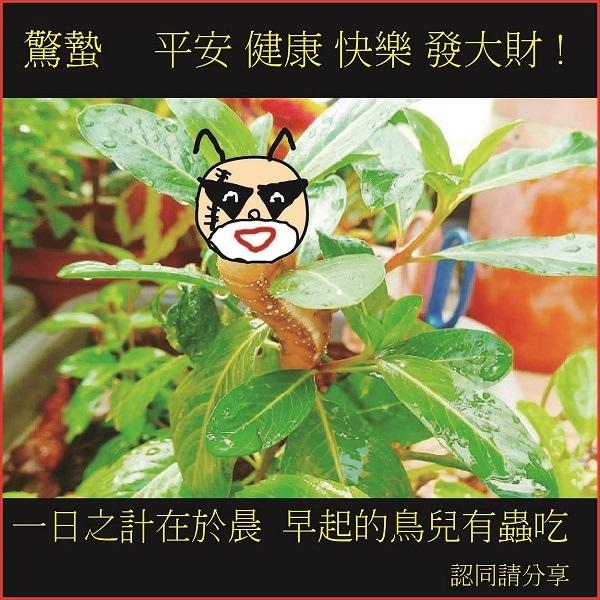 長輩文 驚蟄-01.jpg