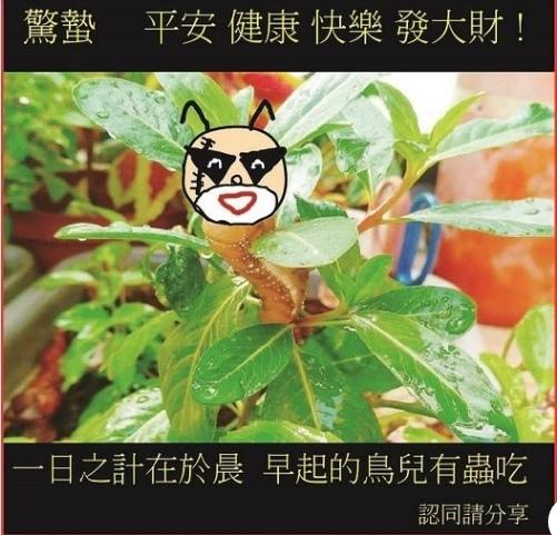 臉書粉專 4.jpg