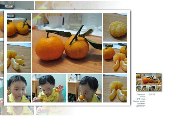 小甜橘.jpg