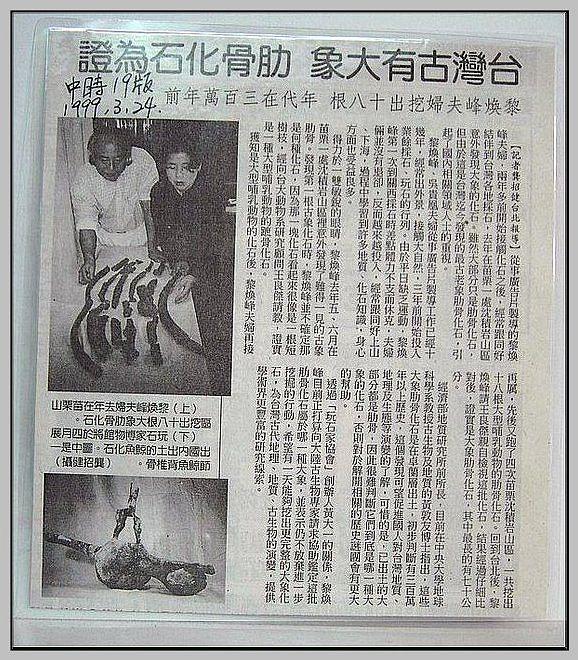 42.【中時報紙 登出】1999.03.24中時、19版
