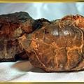 風情萬種~螃蟹化石NO.4
