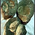 風情萬種 ~ 螃蟹化石NO.10