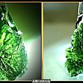 【捷克隕石】:Moldavite 【摩達維石 白鋼項鍊 】No.3
