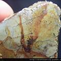 山礦玉石G11152.jpg
