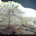 山礦玉石G11162.jpg