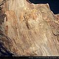 大溪木化G15550.jpg