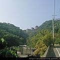 鶯歌神龜石G16422.jpg