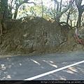 鶯歌神龜石G16429.jpg