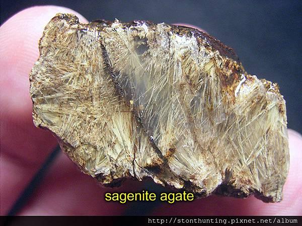 Sagenite_agate_18279.jpg
