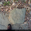 石門水庫G20709.jpg