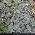 石門水庫G20711.jpg