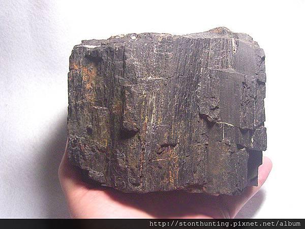 北台-木化石G23022-1.jpg