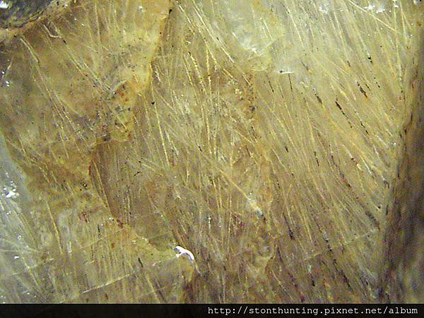 火山毛(茅)-Sagenite_G22965-2.jpg