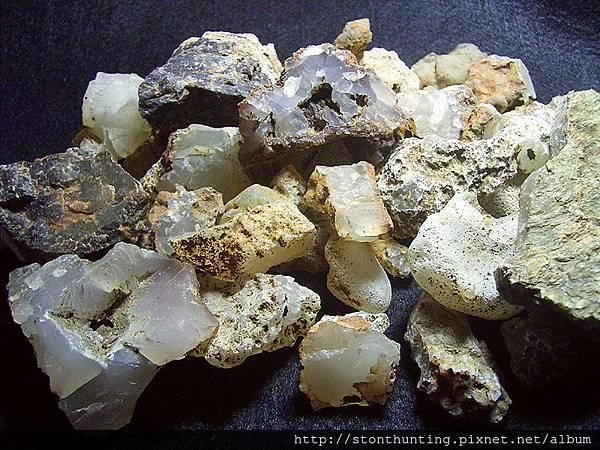 山礦G23490_玉髓木化.jpg