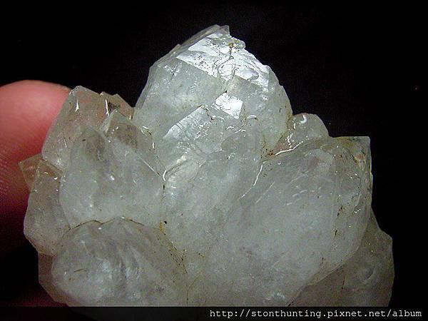 復興鄉-水晶G24498.jpg