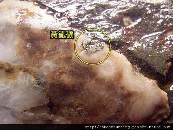 龜山文石G24885.jpg