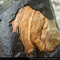 三峽河G25019_文石.jpg