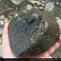 三峽河G25047_梨皮石.jpg