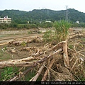 三峽河G25059.jpg
