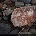 三峽河G25085_木化石.jpg