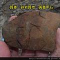 三峽河G25091_黃龜甲石.jpg