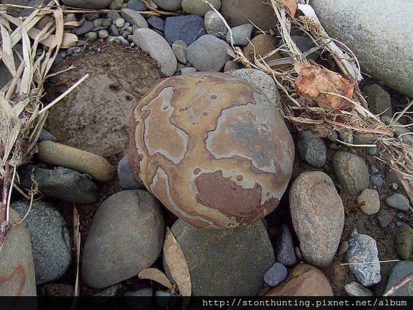 三峽溪G25313_剝皮鐵丸石.jpg