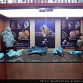 礦物寶石教育展(2016)_G30854.jpg