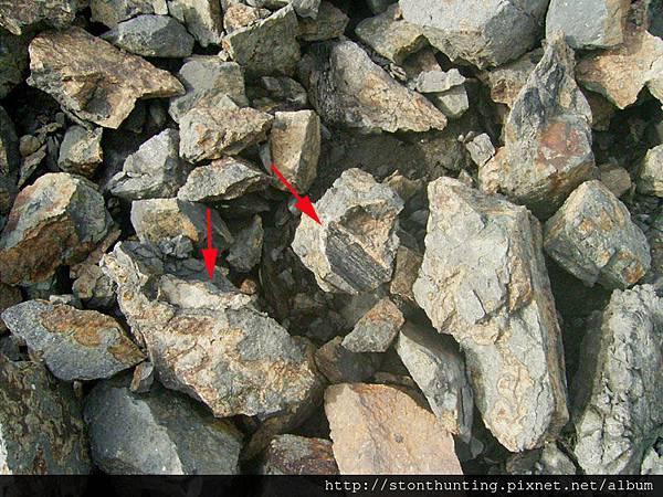 13龜山碳木化G13956.jpg