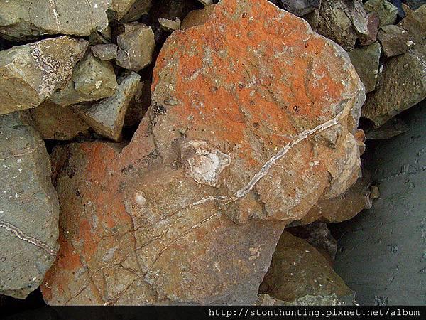 03龜山紋石G13993.jpg