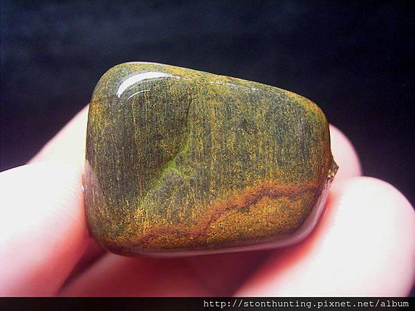 金山_木化石G32640.jpg
