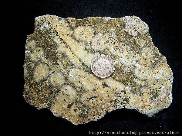 火山茅文石G32740.jpg