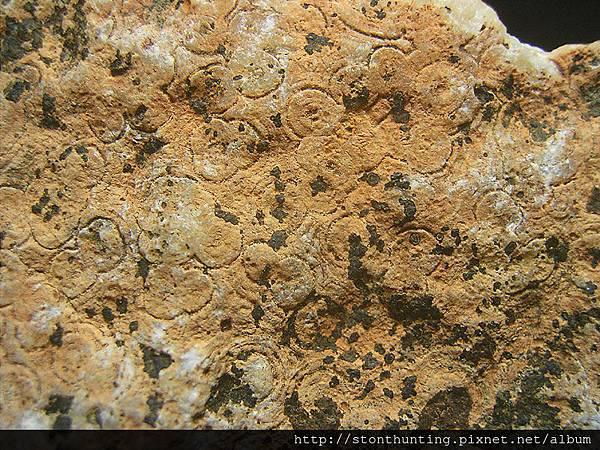 火山茅文石G32753.jpg