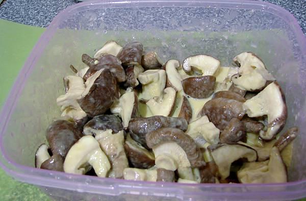 香菇上漿-1