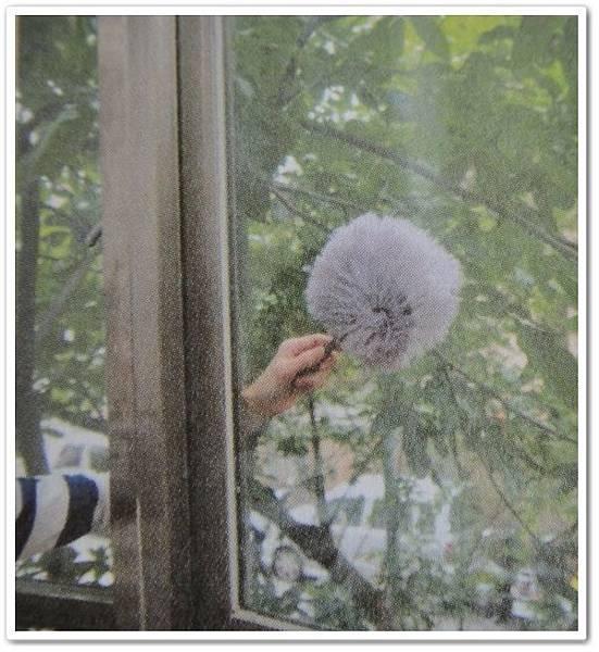 窗戶清潔2..jpg