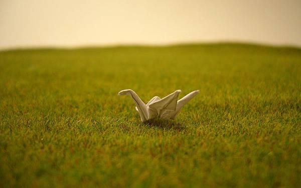 small-crane