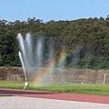 早晨在清大校園跑步看見美麗的彩虹
