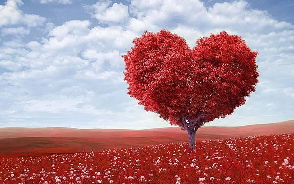 love-wallpaper-6862-7255-hd-wallpapers