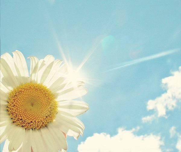 向日葵看不到太阳也会开放,生活看不到希望也要坚持。有些事情不是看到希望才去坚持,-而是坚持了才会看到希望。
