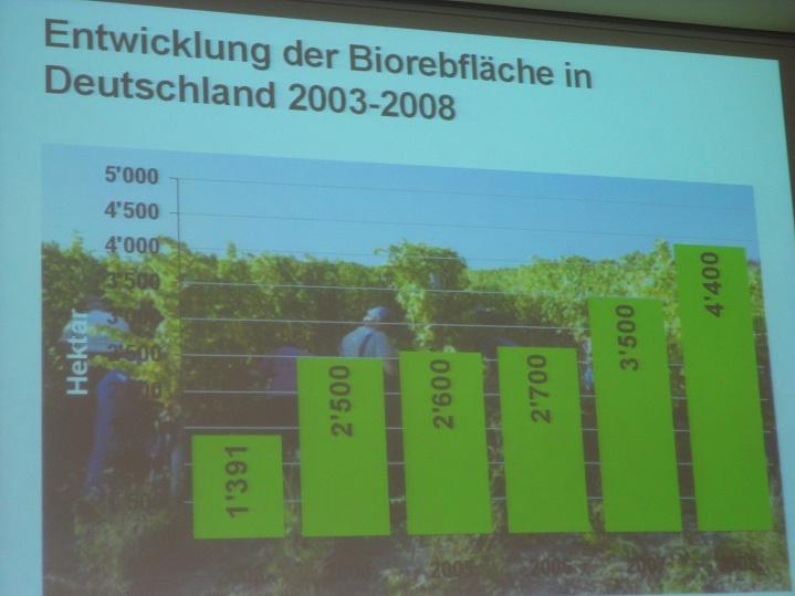 荷蘭有機酒的產量