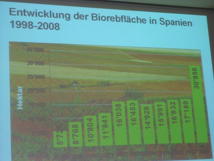 西班牙有機酒產量