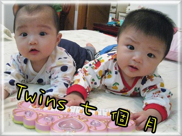 Twins7個月.jpg