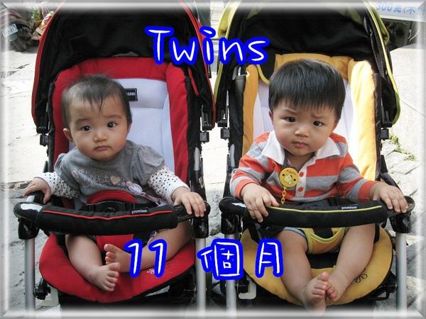 Twins11個月.jpg