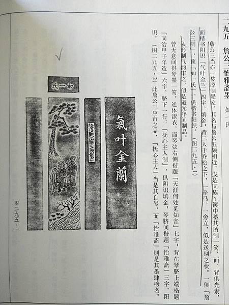 氣叶金蘭3.jpg