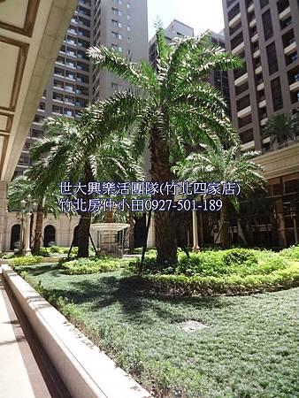 21中悅帝苑-司法特區,喜來登商圈,明星學區,豪宅裝潢視野戶
