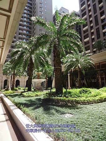 25中悅帝苑-司法特區,喜來登商圈,明星學區,豪宅裝潢視野戶