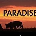 #Coldplay (酷玩樂團)-Paradise