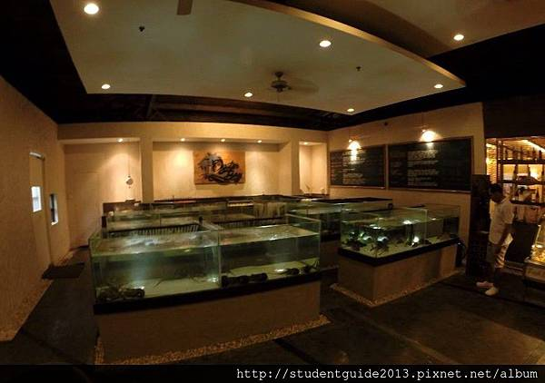 Oyster Bay seafood restaurant (4)