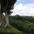 Bohol 20150718&19 (110).JPG
