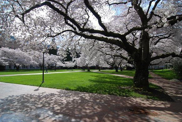 華盛頓大學4.jpg